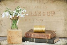 snowdrops and old books | par odile lm
