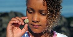 Download a Nature Treasure Hunt and go exploring with your children. #scavenger #activity #kids #outdoor