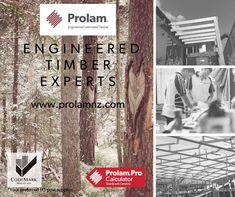 Beams, Flooring, Wood, Woodwind Instrument, Timber Wood, Hardwood Floor, Wood Planks, Trees, Floor