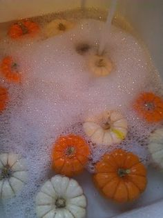 wash pumpkins in bleach water to prevent from rotting in doors. Who knew!