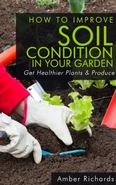 How To Improve Soil Condition in Your Garden by Amber Richards, http://www.amazon.com/dp/B00F141TT6/ref=cm_sw_r_pi_dp_T3jpsb1WNDN9Q