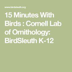15 Minutes With Birds : Cornell Lab of Ornithology: BirdSleuth K-12