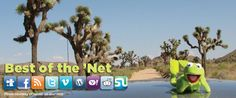 """Kermit explores Joshua Tree National Park: Best of the 'Net: A Roundup of Fun Park Stuff Online–the """"Signs of Spring"""" Edition"""