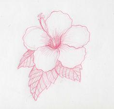 17 Mejores Imagenes De Dibujar Rosas Dibujos A Lapiz Aprender A