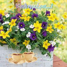 Καλημέρα ...giortazo.gr - Giortazo.gr Greek Quotes, Good Morning, Planter Pots, Sayings And Quotes, Buen Dia, Bonjour, Good Morning Wishes
