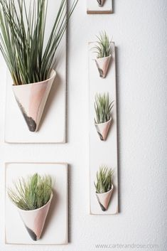 These hanging ceramic wall planters in blush and gray glaze add a touch of greenery to any modern home and is the perfect vessel to display air plants. These indoor planters are mounted to wood and ready to be hung. Visit our online store for more sizes, Ceramic Wall Planters, Hanging Wall Planters, Ceramic Wall Art, Indoor Planters, Hanging Plants, Ceramic Houses, Living Room Plants, House Plants Decor, Plant Decor