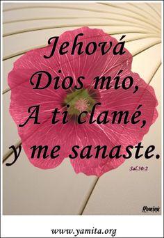 Textos Biblicos Para Evangelizar | Postales Cristianas:El que ama mi alma: LA HERMOSURA DE LOS SALMOS