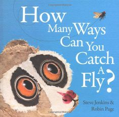 How Many Ways Can You Catch a Fly? by Robin Page http://www.amazon.com/dp/061896634X/ref=cm_sw_r_pi_dp_mbWsvb05W3B9V