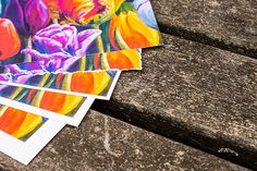 Pick your choice of borders on our Giclee Paper prints! Art by Karen Sistek