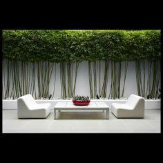 The Secret Gardens...
