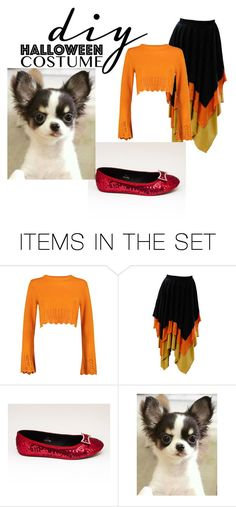 """DIY HALLOWEEN COSTUME...TOTO/DOROTHY.."" by ashleyyjames ❤ liked on Polyvore featuring art"