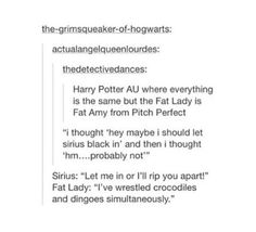 If Pitch Perfect's Fat Amy was in Harry Potter Harry Potter Universal, Harry Potter Fandom, Harry Potter Memes, Slytherin, Hogwarts, Fat Amy, No Muggles, Yer A Wizard Harry, Fandoms