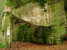 Wasgau News - Aktuelle News aus der Region: Burg Neukastel bei Leinsweiler