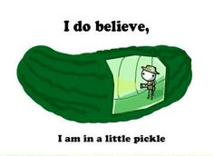 Friend: I think I'm in a bit of a pickle. Me: I guess you'll just have to dill with it. Friend: You're so bitter. Me: *becomes a pickle* Me: I know. *flips hair* Me: *doesn't have hair to flip*  Me: I do believe I'm in a bit of a pickle. Friend:Soury about your bad luck.