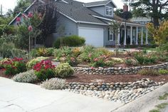drought resistant landscaping | Drought tolerant front yard mediterranean landscape | Water wise landscape | Pinterest | Drought resistant landscaping ... & drought resistant landscaping | Drought tolerant front yard ...