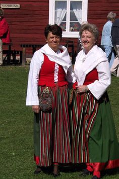 Folk dress of Vånga, Östergötland county Costume Ideas, Costumes, Carl Larsson, White Apron, Kerchief, Daily Dress, Folk Costume, Traditional Dresses, Sweden