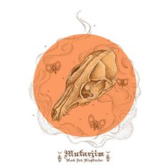 wolf skull drawing coloring artwork