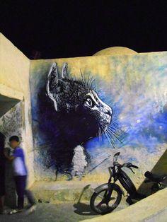 streetart  cat   Erriadh nouvelle capitale du street art ! DJERBAHOOD