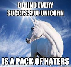 The Last Unicorn.♡♡♡ Behind every successful unicorn is a pack of haters! (I might be mixed in with the haters maybe) Majestic Unicorn, Real Unicorn, The Last Unicorn, Magical Unicorn, Cute Unicorn, Unicorn Dust, Funny Unicorn Memes, Unicorn Farts, Unicorn Humor