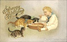 A Happy Birthday Cats
