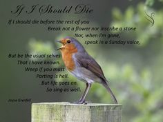 Swanborough Funerals have put together over 100 funeral poems and readings for you to select from. Providing comfort and support in your time of need. Funeral Readings, Funeral Prayers, Funeral Poems, Beautiful Poetry, Life Goes On, Always Remember, Verses, Lyrics, Death