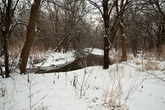 Naperville winter | Naperville Winter Walk | Shot of the Day