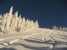 Epic skiing condition at Mount Washington (BC) in 2008