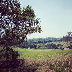 7. Parque do Carmo - Localizado na área da antiga fazenda de um rico empresário, o parque conta com um prédio sede em arquitetura colonial, um conjunto de lagos e área ajardinada. Há 35 anos, sedia a Festa das Cerejeiras, que comemora o florir da árvore símbolo do Japão.