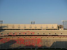 UGA 50th birthday |Dawg Birthday Party | Sanford Stadium Party
