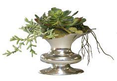 Faux succulents in silver vase Faux Succulents, Planting Succulents, Succulent Planters, Succulent Arrangements, Floral Arrangements, Flora Design, Architecture, Wedding Flowers, Design Inspiration