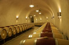 Inside Palmaz, the Winery Hidden Within Napa's Mt. George « Sugarfly Wine