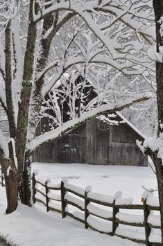 snowandcoco: ツ new seasonal blog, follow snowandcoco for more winter ツ