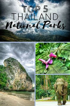 There are plentiful opportunities for getting up close to nature in some fantastic national parks, where the local wildlife comes front and center to the experience. Here are some of my favorite national parks in Thailand, to give you an idea of what the country has to offer!