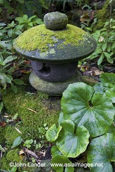 Japanese Stone Lanterns and Moss by John Lander