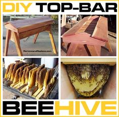 beehive DIY top-bar beehive - frameless beehive. allows beekeeping methods that interfere much less with the bee colony.
