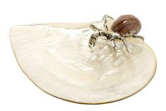 Mother of Pearl with silver hermit crab turbo (3 Legs) Mother of Pearl or MOP is the shell in which pearls grow. Lotus Art de Vivre uses them to provide a beautiful serving device for your home. The hermit crab is of Sterling silver.