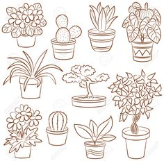 Doodle Set Of Pot Plants And Flowers Royalty Free Cliparts, Vectors, And Stock Illustration. Easy Doodle Art, Doodle Art Drawing, Plant Drawing, Coloring Books, Coloring Pages, Cactus Doodle, Plant Tattoo, Flower Doodles, Doodle Flowers