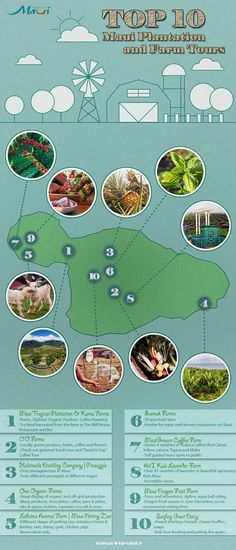 Visit plantation and farms in Maui