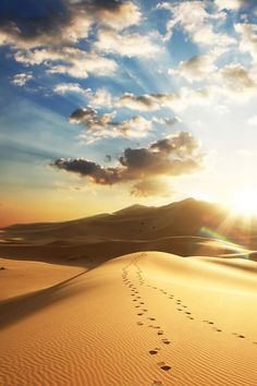 The rolling sandy hills~