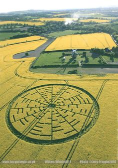 crop circle images - Google Search