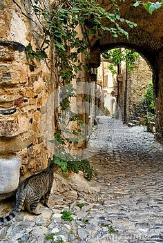 Alleys Of Bussana Vecchia - Download From Over 53 Million High Quality Stock Photos, Images, Vectors. Sign up for FREE today. Image: 81273994