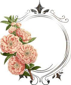 vintage flower png - Поиск в Google