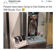 Harry Potter fans continued to be awesome by leaving socks for the encaged Dobby at Warner Bros. Studio.
