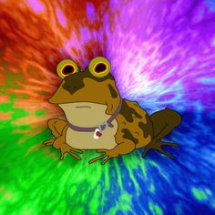 FORGET ABOUT TRUMP JR. AND NET NEUTRALITY ALL GLORY TO HYPNOTOAD
