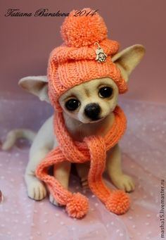 Effective Potty Training Chihuahua Consistency Is Key Ideas. Brilliant Potty Training Chihuahua Consistency Is Key Ideas. Needle Felted Animals, Felt Animals, Needle Felting, Animals And Pets, Baby Animals, Cute Animals, Chihuahua Puppies, Chihuahua Love, Cute Puppies