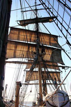 }{   James Craig Square-rig Sailing