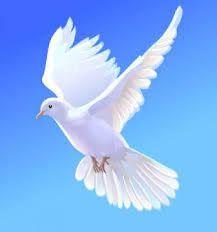 """Résultat de recherche d'images pour """"peace"""""""
