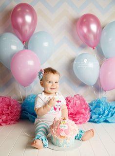 Jeneanne Ericsson Photography pink and aqua owl theme 1st birthday cake smash