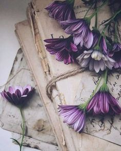 Wallpaper Iphone Vintage Flowers Products New Ideas Flower Aesthetic, Book Aesthetic, Purple Aesthetic, Still Life Photography, Book Photography, Cute Backgrounds, Cute Wallpapers, Flower Wallpaper, Iphone Wallpaper