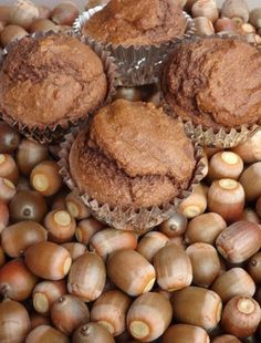 How to process acorns and use the meal/flour to make muffins. They're really tasty!!